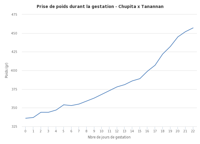 chupita - WEE-PAZ Tanannan x R2G Chupita de la Aguardiente D3d076d5bc294114aa550e4ef3f72be31433231767397692